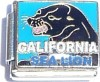 California Sea Lion Italian Charm