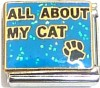 All About My Cat Italian Charm