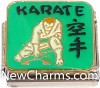CT9484 Karate On Green Italian Charm