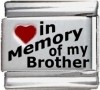 In Memory of my Brother