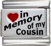 In Memory of my Cousin