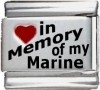 In Memory of my Marine