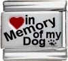 In Memory of my Dog