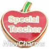 H1143 Special Teacher On Red Apple Floating Locket Charm