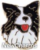 H1443 Black And White Dog Floating Locket Charm