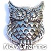 H4024 Owl Floating Locket Charm