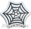 H6224 Silver Spider Web Floating Locket Charm