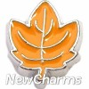 H7662 Leaf Floating Locket Charm