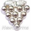 H7881 Silver Grapes Floating Locket Charm