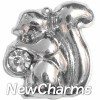 H8089 Squirrel With Stone Floating Locket Charm