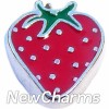 H8221 Strawberry Floating Locket Charm