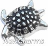 H8251 Turtle Floating Locket Charms