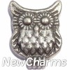 H8260 Owl Floating Locket Charm