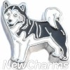 H8335 Husky Floating Locket Charm