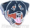 H8337 Rottweiler Floating Locket Charm