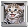 A10165 Kitty with Mouth Open Italian Charm