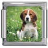 A10408 Beagle Puppy Dog Italian Charm