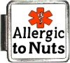 ALLERGIC TO NUTS Custom Photo Italian  Charm