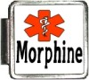 MORPHINE Custom Photo Italian  Charm