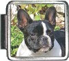 A10007 Boston Terrier Italian Charm
