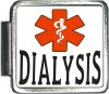 DIALYSIS Custom Photo Italian  Charm