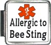 Allergic to Bee Sting Custom Photo Italian  Charm
