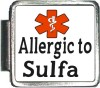 Allergic to Sulfa Custom Photo Italian  Charm