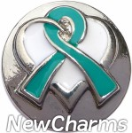 GS521 Teal Ribbon Snap Charm